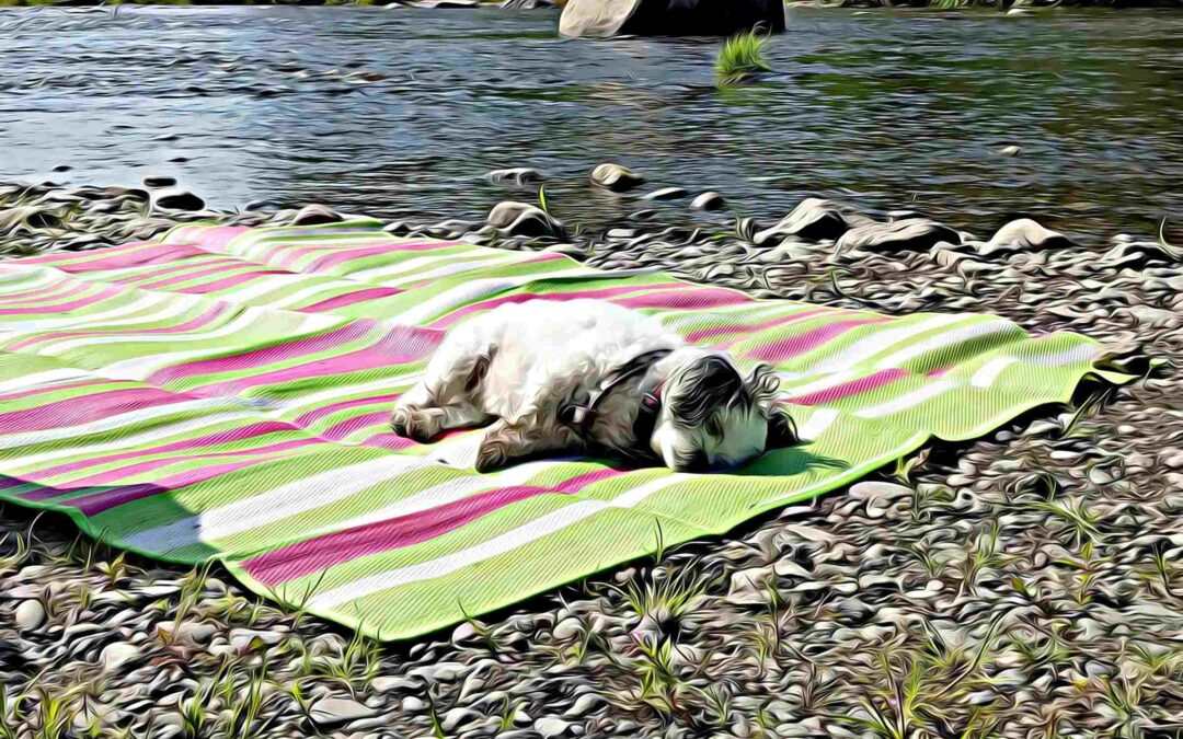 Easy to keep clean and fold outside comfortable blanket
