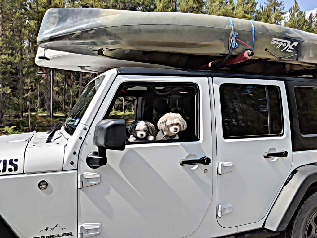 Kayaks tied to the Jeep with dogs in the car